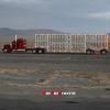 Trucker00