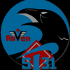 Raven_2012
